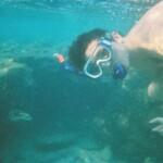 Shark\'s Bay